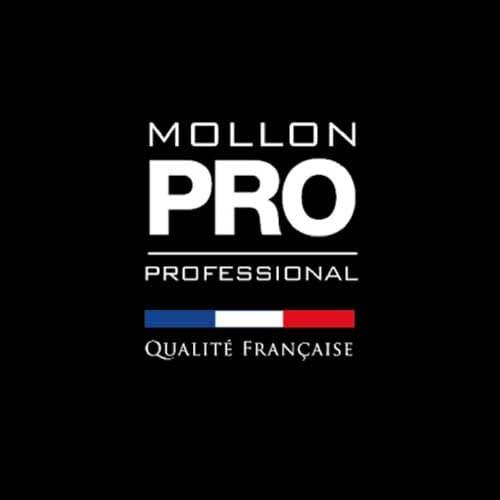 mollonPro_500-2